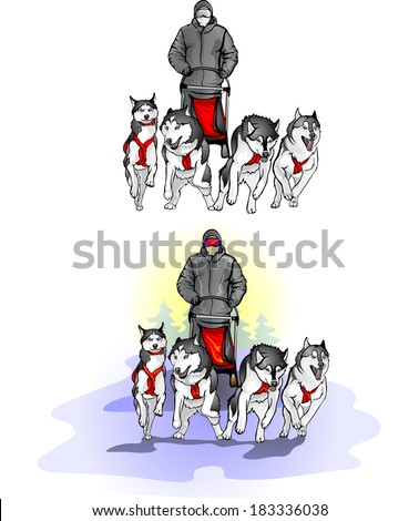 team of four sports sled dogs