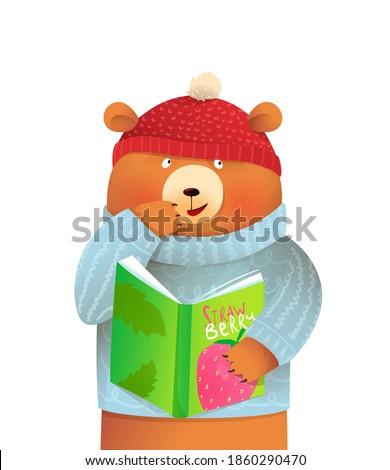 teddy bear wearing winter