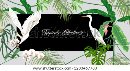 template for greeting card for