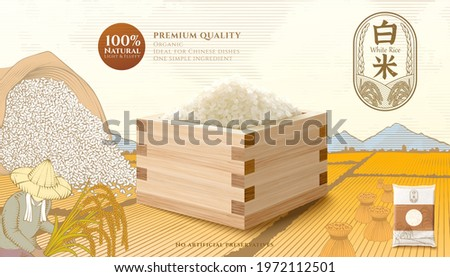 Template of rice product ad. 3d mockup of steamed rice in the wooden container. Engraving sketch of sheaves of straw on a paddy field, and a farmer harvesting. Chinese translation: milled rice