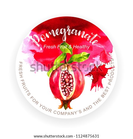 Template with pomegranate fruit and grunge texture watercolor painting, vector illustration and design.
