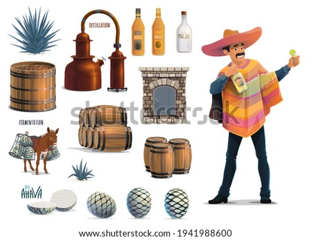 Tequila making, Mexican agave alcohol drink production, vector equipment icons. Tequila traditional handmade factory process and making tools, thona oven and agaumiel mill, mule and agave pina cones