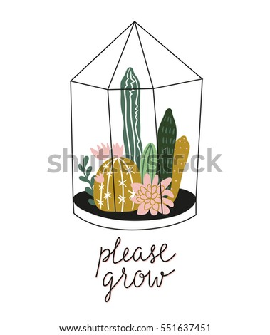 terrarium with succulents and