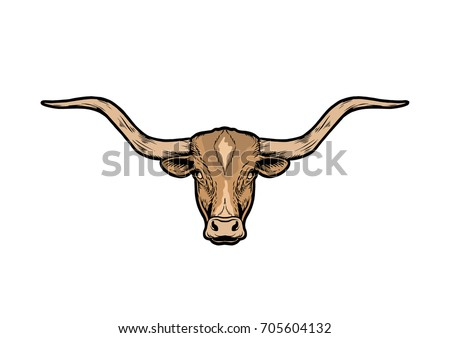 texas bull longhorn...