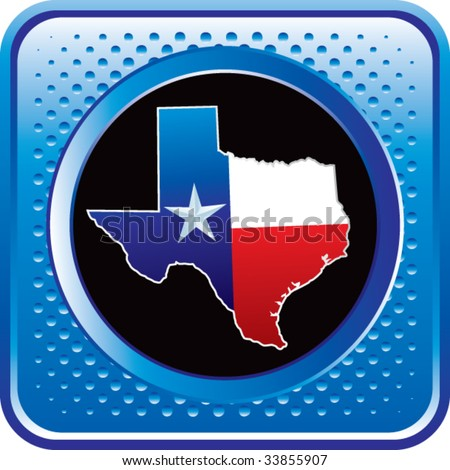texas icon on glossy web button