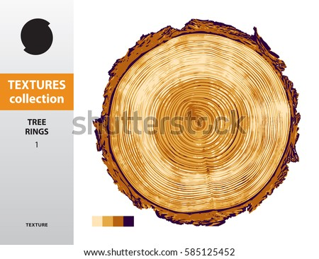 TEXTURE COLLECTION. Tree rings 1. Four-color vector saw cut