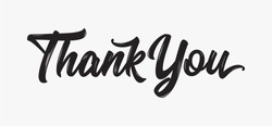 Thank you Hand drawn lettering. Calligraphic Lettering, Vector illustration.