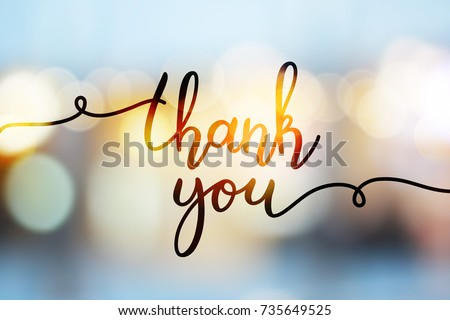 stock-vector-thank-you-vector-lettering-on-blurred-lights-background
