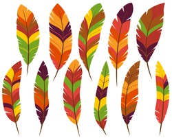 Thanksgiving or Fall Colored Feathers