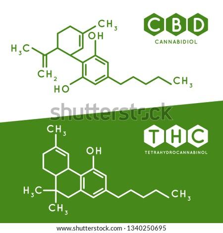 Thc and cbd formula. Cannabidiol and tetrahydrocannabinol molecule structure compound. Medical marijuana molecules, cannabidiol biochemistry formula. Chemistry addiction vector illustration