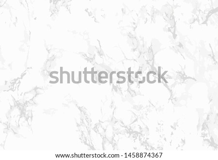 the background of white marble