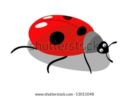 The beautiful insect is red ladybird