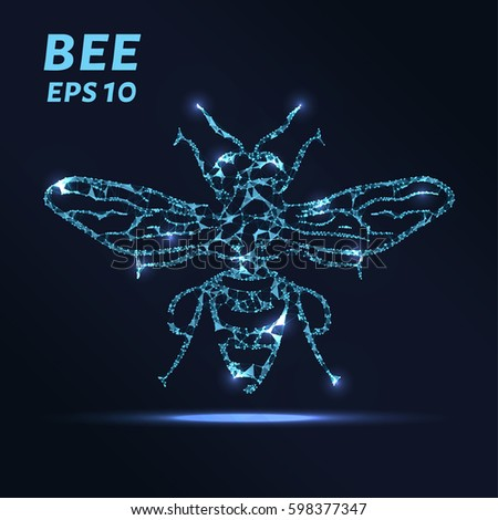 the bee consists of points