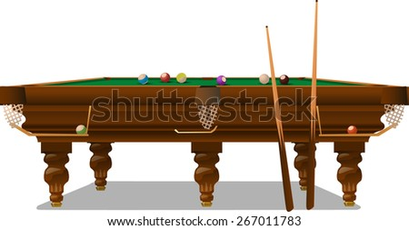 the billiards table with cue