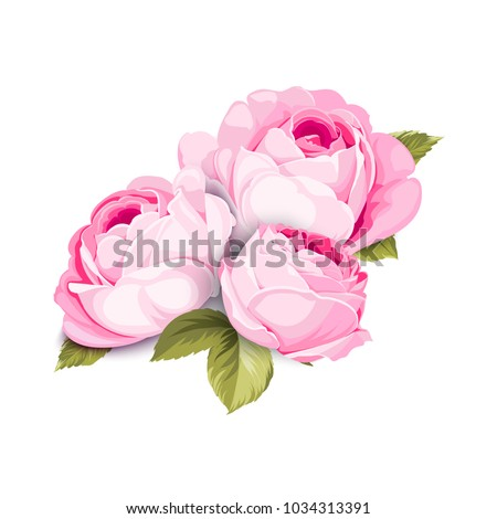 the blooming rose with couple
