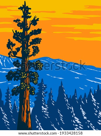 The Boole Tree Giant Sequoia in Converse Basin Grove of Giant Sequoia National Monument in Sierra Nevada Fresno County California Usa WPA Poster Art Stock fotó ©