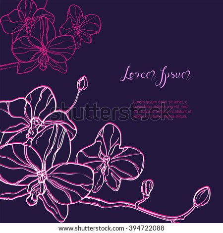 Download Purple Orchid Wallpaper 240x320   Wallpoper #74397