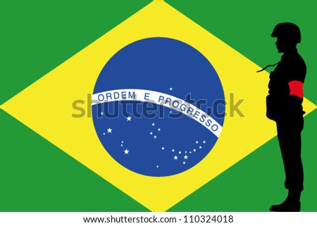 the brazilian flag and the