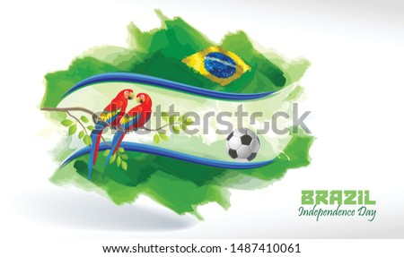 The Brazilian flag background with a football and a couple of macaw parrots