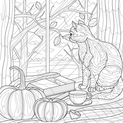 The cat sits near the pumpkin and looks out the window. Autumn .Coloring book antistress for children and adults. Illustration isolated on white background.Zen-tangle style. Hand draw
