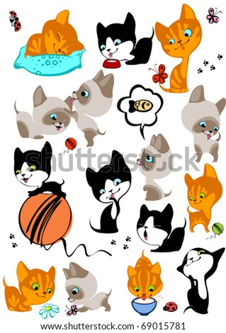 The complete set of different cheerful kittens. Similar in a portfolio
