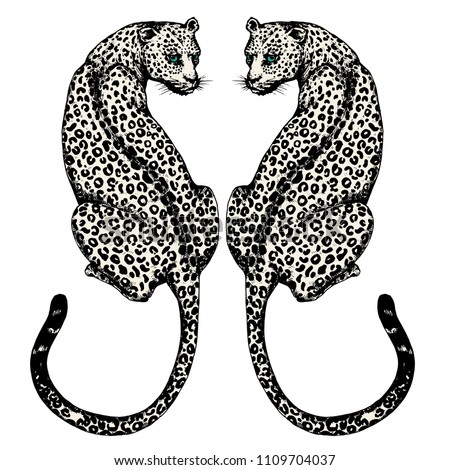 the couple jaguars hand drawn
