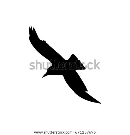 The crow symbol