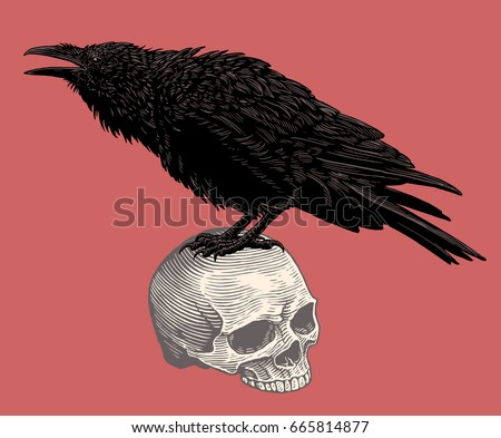the crow sits on the skull