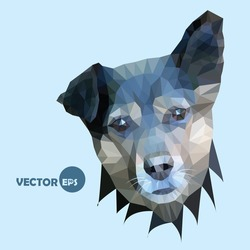 The cute dog listens raising the ear. vector illustration done in the style of polygonal graphics (low-poly) dogs on an isolated background.