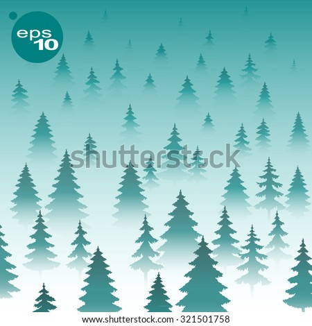 the dense forest of fir trees