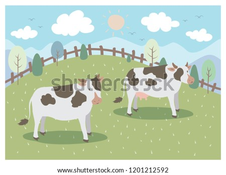 the design of two dairy cows on