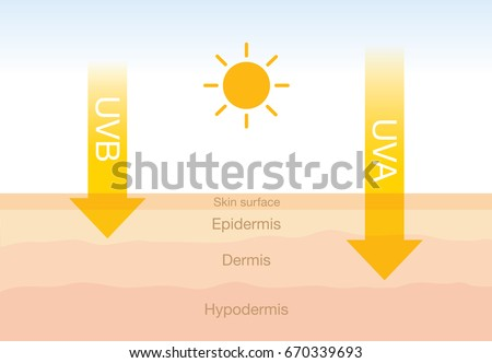 The difference of radiation 2 types in sunlight which is harmful to the skin.Illustration about UVA penetrate deep than UVB. Foto stock ©