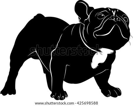 the dog breed bulldog dog