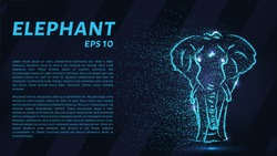 The elephant is made of blue luminous points. The elephant of the particle. Vector illustration
