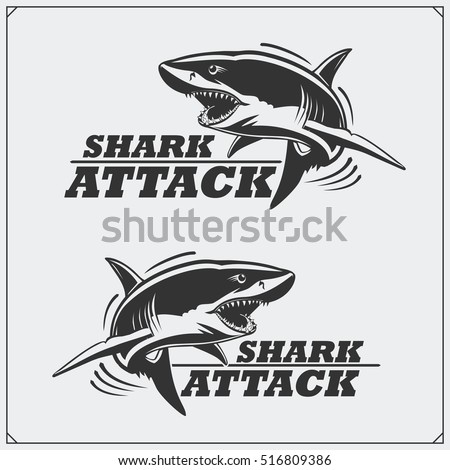 the emblem with shark for a