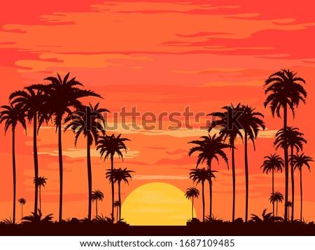the evening on the beach summer
