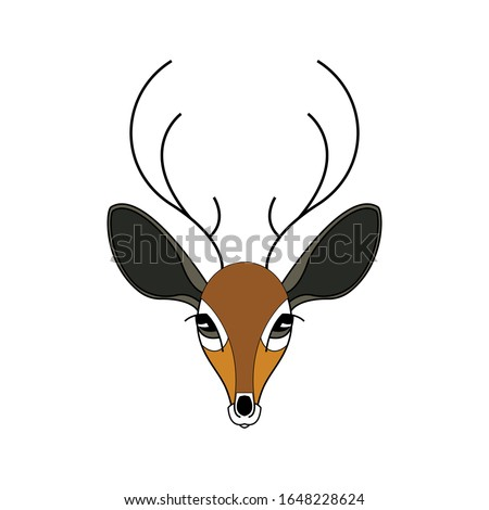 The face of a doe. Cartoon style. Color drawing. Vector illustration.