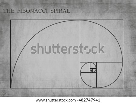 the fibonacci spiral  also