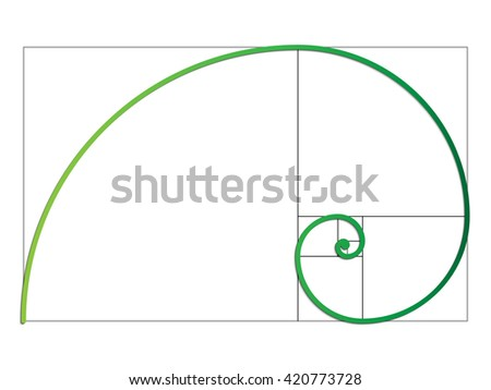 the fibonacci spiral vector