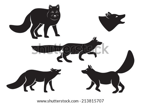 the figure shows a fox