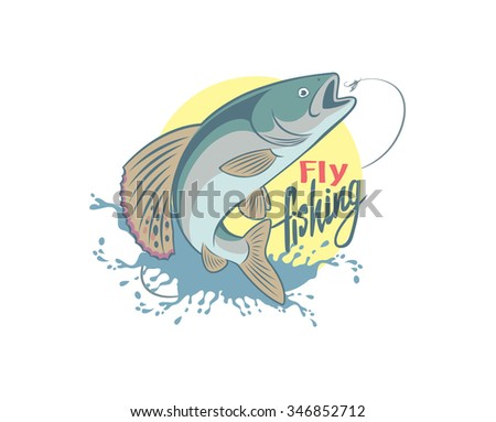 the figure shows the fly fishing
