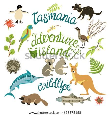 The flora and fauna of Tasmania. Animals, birds, fish, plants (koala, lyrebird, Tasmanian devil,  marlin, eucalyptus, penguin)  and lettering. For card, poster, tag,  sticker kit. Vector illustration.