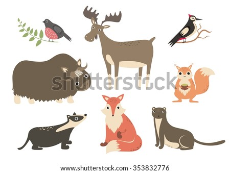 the forest animals cartoon