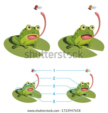the frog is trying to catch a