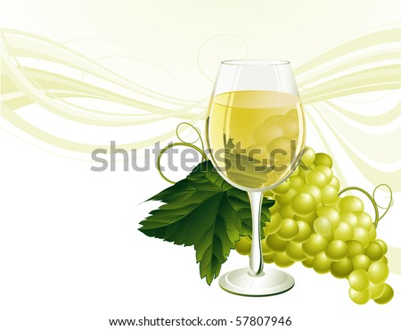 The glass of white wine and grape. Vector.
