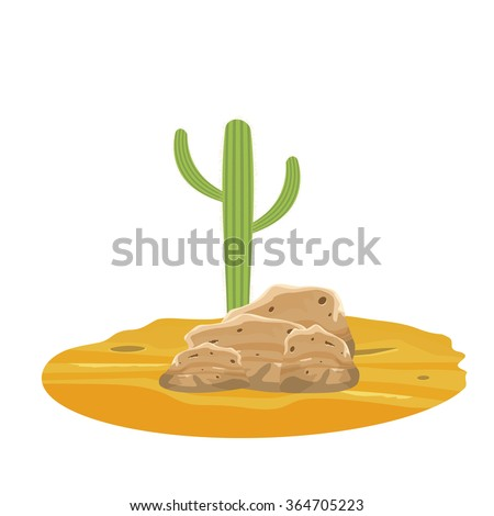 the green cactus on a rocky
