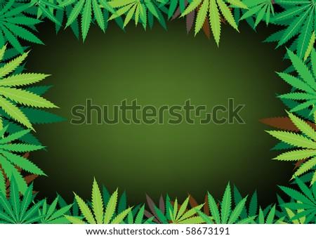 The green hemp, cannabis leaf dark framework background