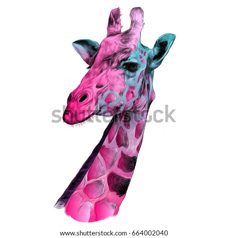Shutterstock the head of a giraffe sketch vector graphics color pattern pink and blue