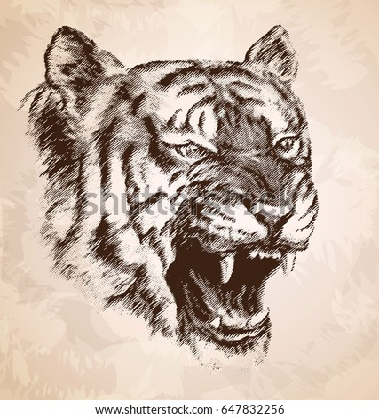 the head of the evil tiger