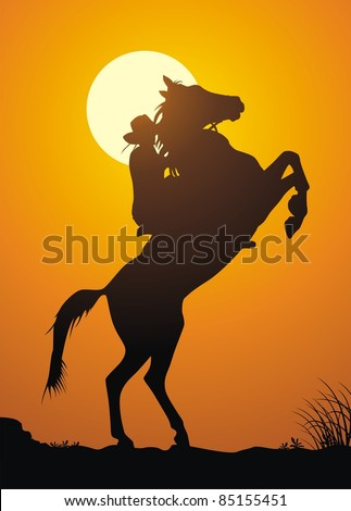 The horsewoman on a game against a sunset
